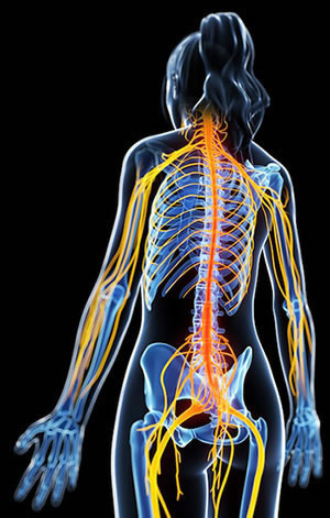 Pinched Nerves can be anywhere in the body